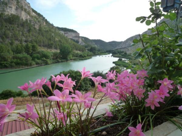 Rio Jucar  - South Castilla - Albacete