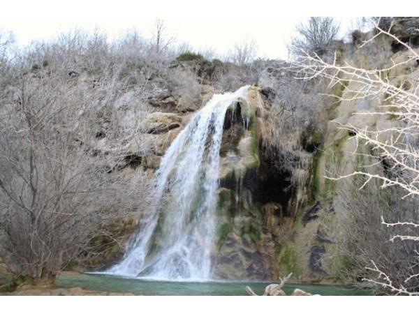 El Ruiseñor  - North Castilla - Burgos
