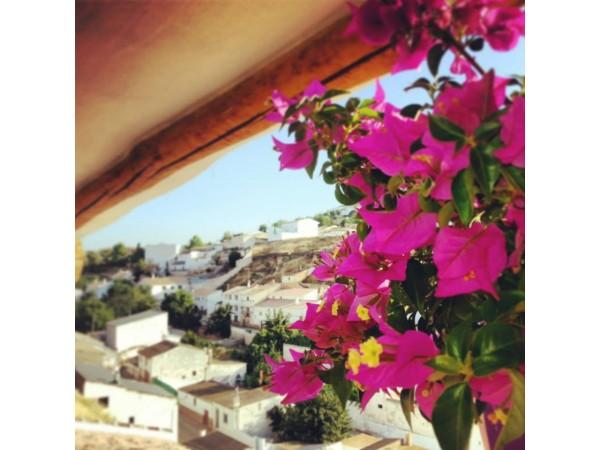 El Cortijo Andaluz  - Inside Andalusia - Jaen