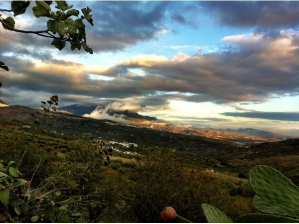 Cortijo Las Monjas  - South Coast - Malaga