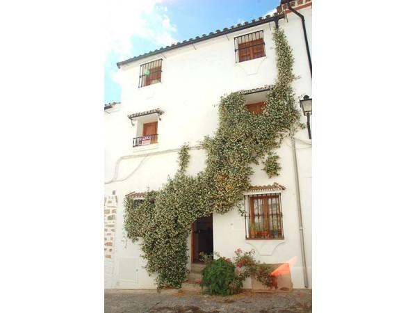Aladin  - West Andalusia - Cadiz