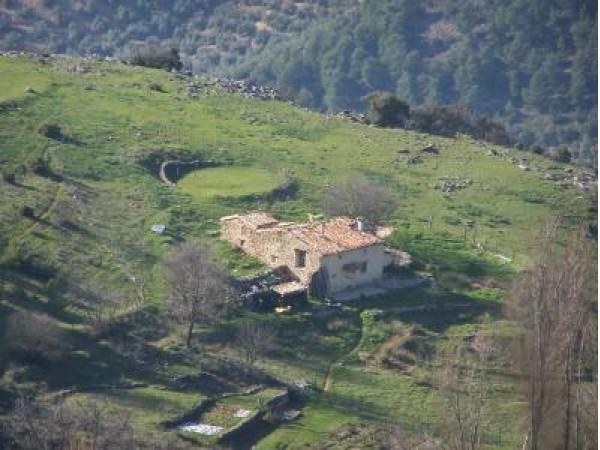 Pension Cebadilla Baja  - Inside Andalusia - Jaen