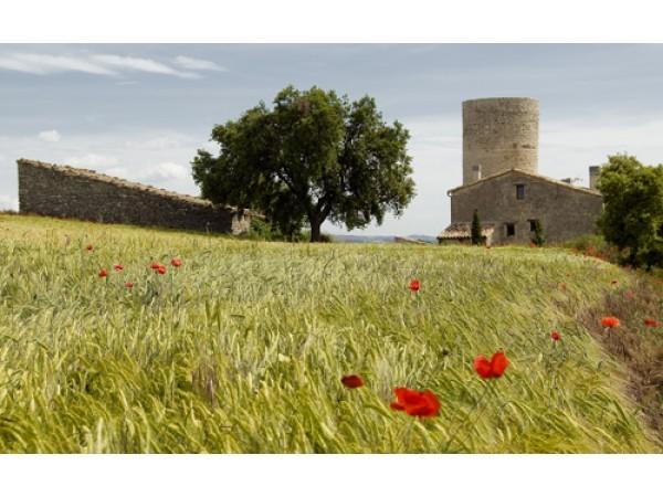 Torre De Mejanell  - Inside Catalonia - Lleida