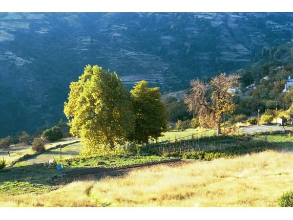 Casa Launa  - Baetic Gebirge - Granada