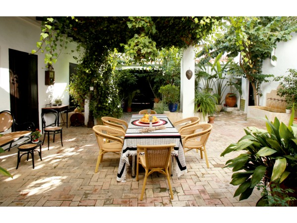 Hotel Chamarel  - South Coast - Alicante