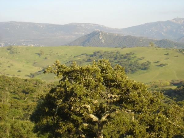 Casa Rural Los Murtales  - West Andalusia - Cadiz