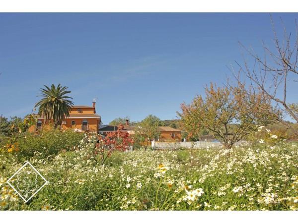 El Endulzaero  - Extremadura - Badajoz