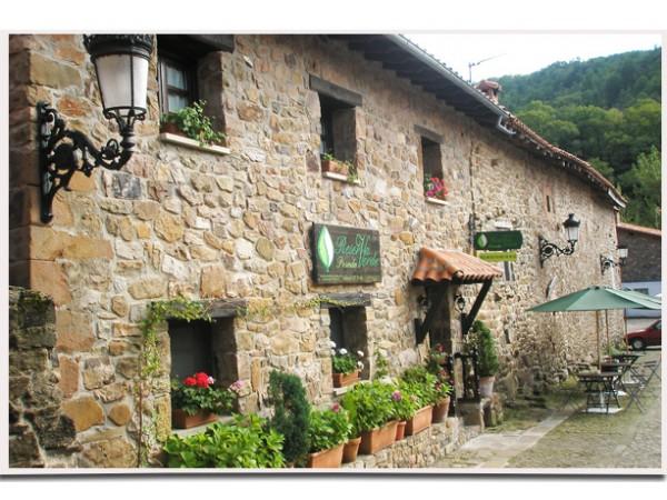 Posada Reserva Verde  - Cantabrian Mts. - Cantabria