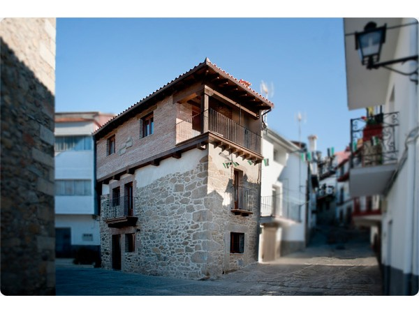 Arbequina  - Extremadura - Caceres