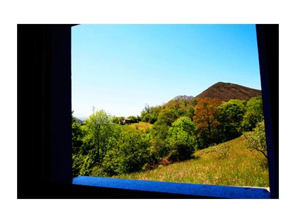 La Curuxa  - Cantabrische Mts. - Asturias