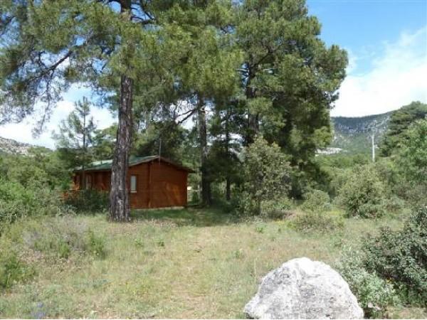 El Llano De Los Conejos  - South Castilla - Cuenca