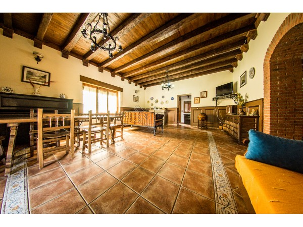 La Coqueta  - North Castilla - Salamanca