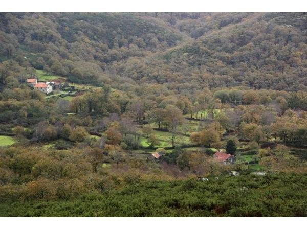 Aldea De Portomartiño  - Innerhalb Galicia - Pontevedra