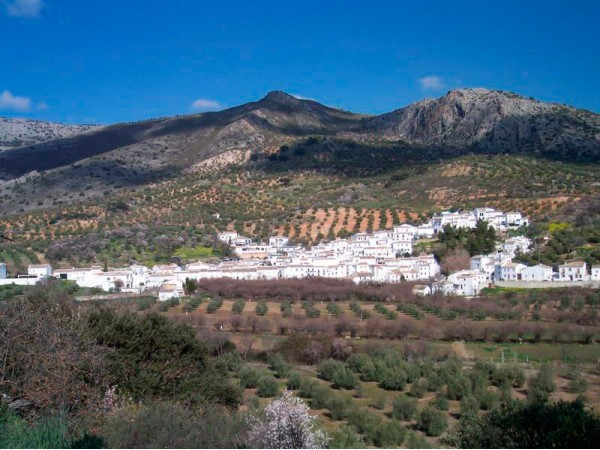 Casa De La Higuera  - Inside Andalusia - Cordoba