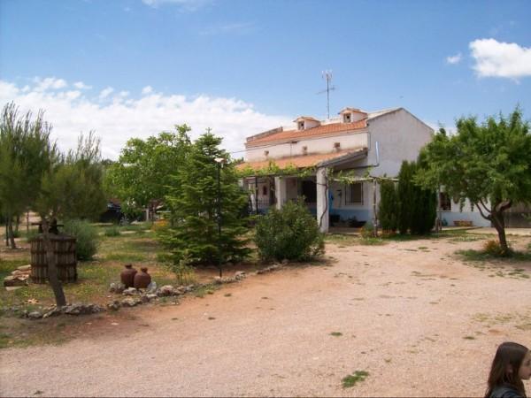 Casas rurales el palomar casa rural ossa de montiel campo de montiel sierra de alcaraz - Casas rurales en el campo ...