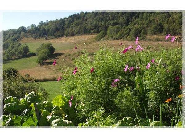 Hostal d´Éller  - Pyrenees - Lleida