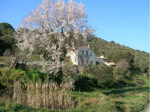 Mas Vinyoles  - Costa Brava - Girona