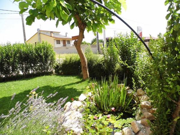 Casa Rural Jose O Pequeno  - North Castilla - Leon