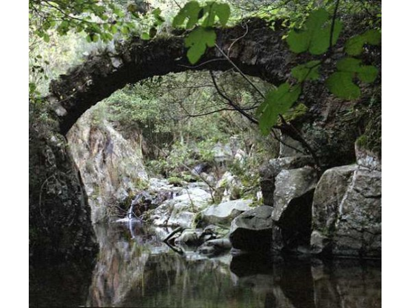Selva, Girona