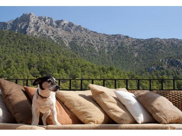 Cortijo El Coto  - Baetic Mountains - Almeria