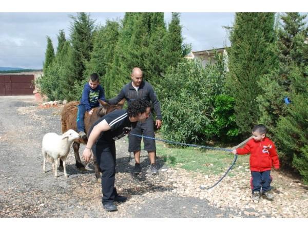 RuralSuite  - Basque Country - Navarra