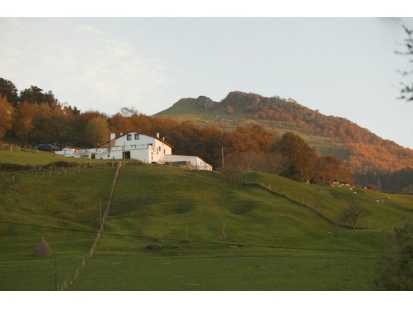 Montefrio  - Basque Country - Guipuzcoa