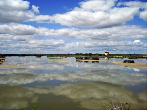 Los Chariles  - North Castilla - Zamora