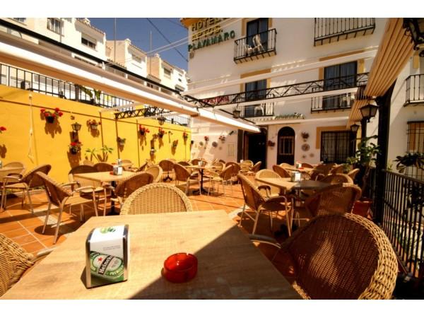 Hotel Playamaro  - South Coast - Malaga