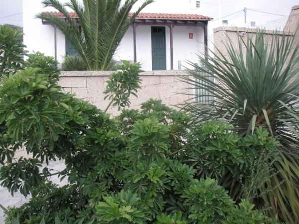 Casa La Sombrera  - Canary Islands - Santa Cruz de Tenerife
