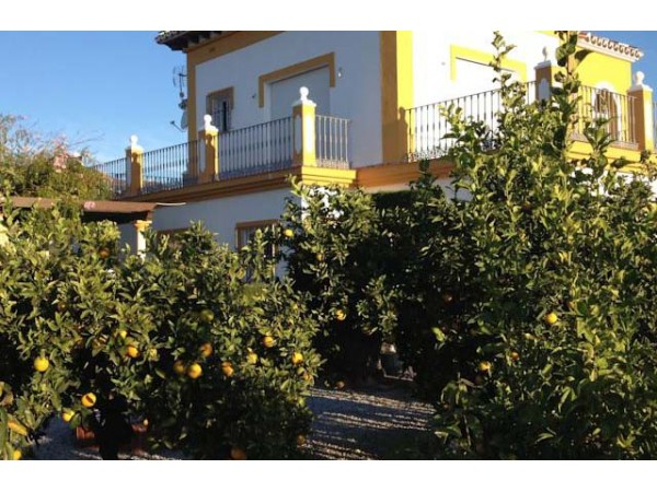 Casa Colina Del Sol  - South Coast - Malaga