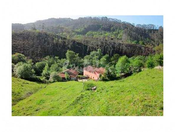 El Molino De Gasparin  - Cantabrian Mts. - Asturias