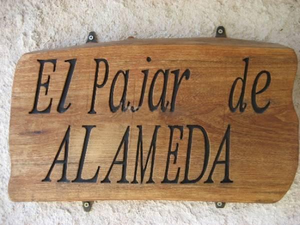 El Pajar De Alameda  - Around Madrid - Madrid