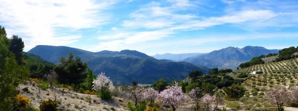 Alojamiento Rural Huerto Del Francés  - Inside Andalusia - Jaen