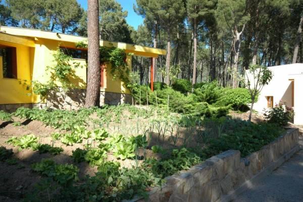 Paraiso Del Tietar  - Around Madrid - Avila