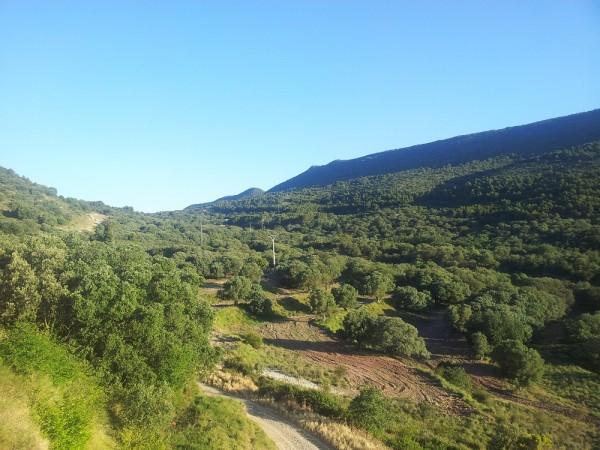Alins del Monte - Azanuy - Fonz