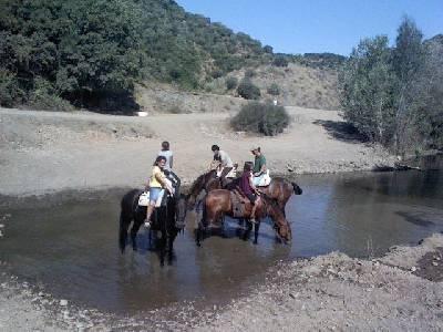 Mojapies a caballo