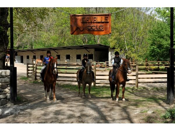 Cavalls_Xic