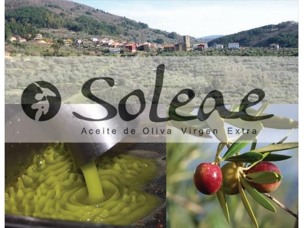 Aceite_De_Oliva_Soleae