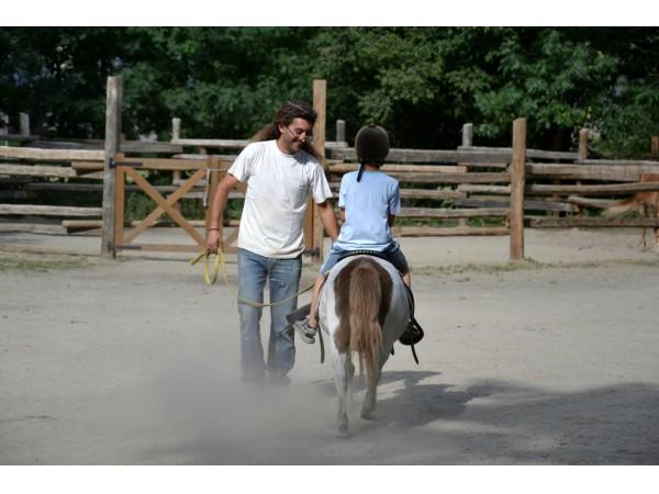 Cavalls Xic