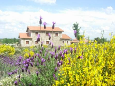 Casas Rurales Arribes Durii