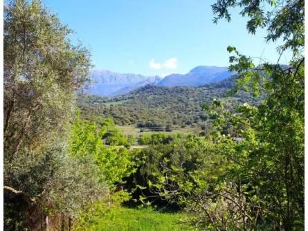 Vivienda Rural El Alamar