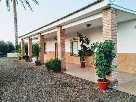La Casa De Pepito Del Villar