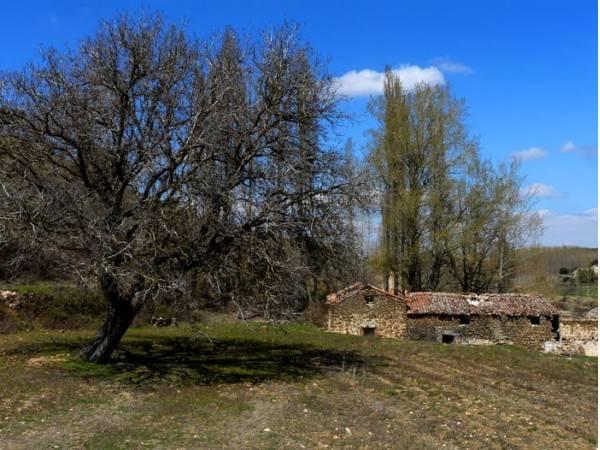 Casas Rurales Montemayor