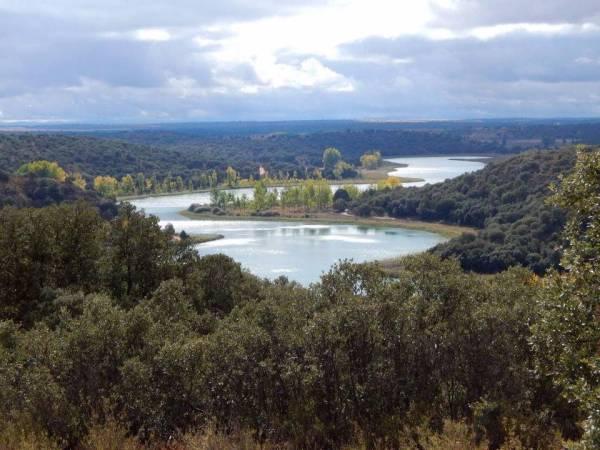 El Romeral De La Laguna