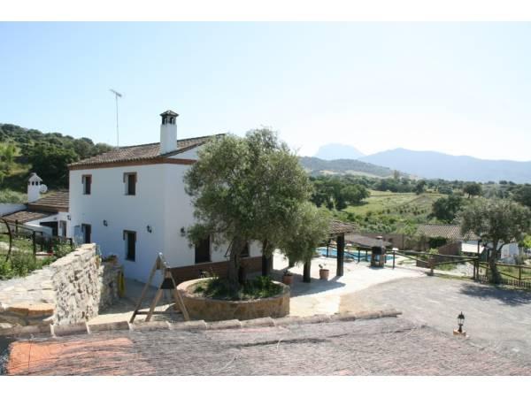 Casa Rural Los Cuatro Olivos