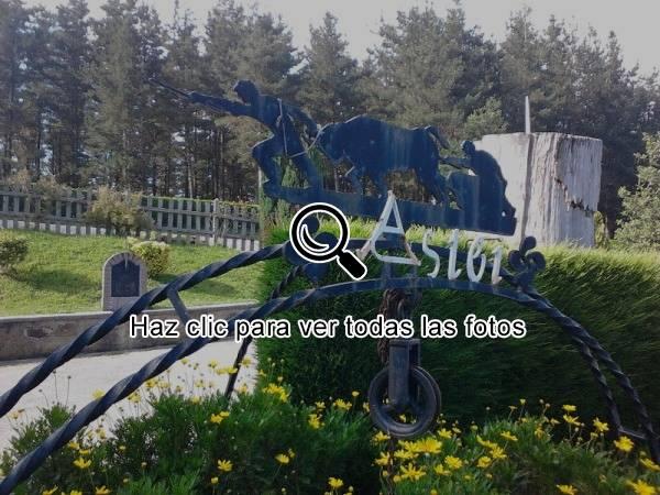 Astei