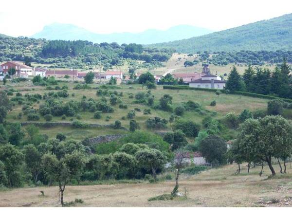 Los Monteros