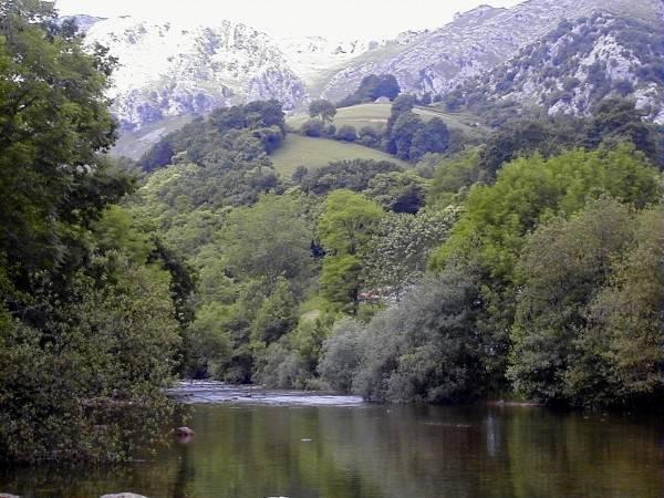 Nacimiento del Río Asón