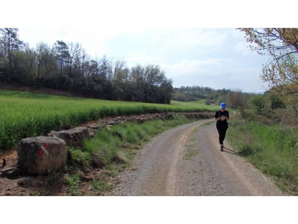 Ruta de Vallferosa