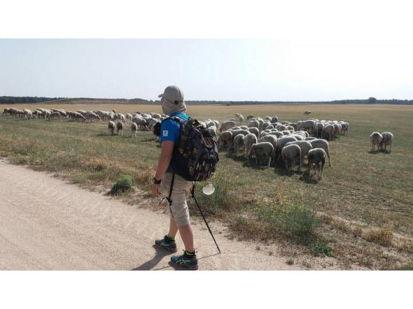 Camino de Santiago por la Campiña Segoviana
